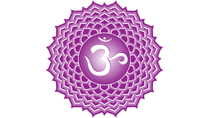 Sound Bath:  Healing the Crown Chakra @ Temecula Reiki Center