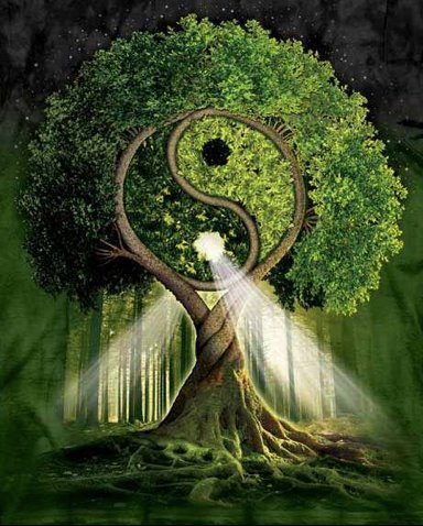 Meditation Workshop: Healing the Family Tree (in-person and online attendance available) @ Temecula Reiki & Sound Healing Center